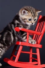 Preview iPhone wallpaper Kitten and chair