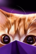 Preview iPhone wallpaper Kitten in package, art picture