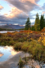 Preview iPhone wallpaper Kolyma, mountains, trees, grass, river, autumn