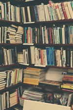 Many books, library