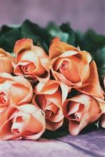 Orange roses, wood board