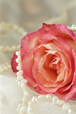 Preview iPhone wallpaper Pink rose, pearl, necklace