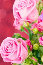 Preview iPhone wallpaper Pink roses, irises, bouquet, flowers