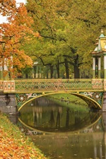 Preview iPhone wallpaper Pushkin, Saint Petersburg, park, trees, river, bridge, autumn