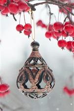 Bagas vermelhas, galhos, decoração de brinquedos