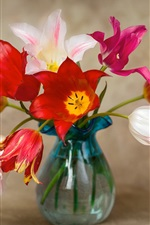 Preview iPhone wallpaper Red, pink, white tulips, vase