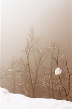 Preview iPhone wallpaper Snow, trees, fog, winter