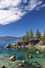 Preview iPhone wallpaper Tahoe lake, trees, stones, USA