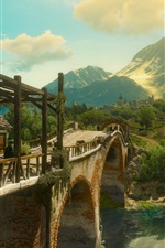 The Witcher 3: Wild Hunt, bridge, trees, green, art picture