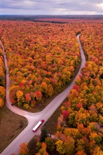 Preview iPhone wallpaper USA, Michigan, autumn, trees, road, truck, top view