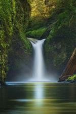 USA, river, waterfall, trees, green
