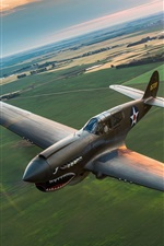 Preview iPhone wallpaper Warhawk P-40 fighter flight, retro style