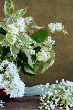 Preview iPhone wallpaper White flowers, lilac, lily of the valley