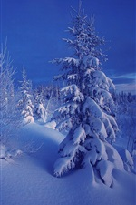 Preview iPhone wallpaper Winter, evening, snow, trees, Norway
