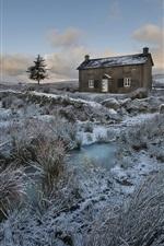 Winter, grass, snow, house, dusk