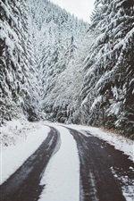 Preview iPhone wallpaper Winter, trees, snow, road