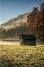 Preview iPhone wallpaper Wood house, grass, trees, fog, morning