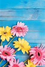 Preview iPhone wallpaper Yellow and pink gerbera flowers, blue wood board background