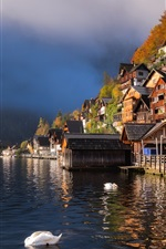 Preview iPhone wallpaper Beautiful city view, Hallstatt, Austria, houses, lake, ducks