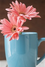 Preview iPhone wallpaper Blue cup, pink gerbera flowers