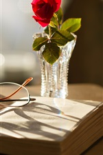 Preview iPhone wallpaper Book, glasses, rose, vase, sun rays
