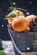 Preview iPhone wallpaper Bucket, citrus, snowy