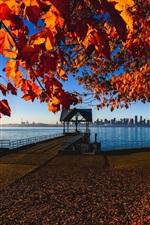 iPhone fondos de pantalla Canadá, Vancouver, otoño, hojas de arce, muelle, costa