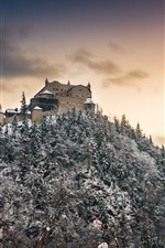 Preview iPhone wallpaper Castle, trees, snow, mountain, winter, dusk