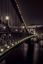 Preview iPhone wallpaper Chain Bridge, Budapest, night, city, river, lights