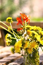 Preview iPhone wallpaper Dandelions flowers, bench, summer