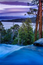 Emerald Bay, California, USA, trees, pines, river, dusk