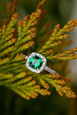 Emerald ring, twigs
