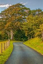 iPhone fondos de pantalla Campos, hierba, cerca, camino, árboles