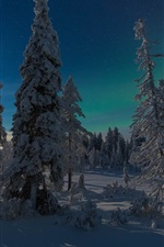 Preview iPhone wallpaper Finland, Kuusamo, forest, winter, snow, sun rays