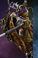 Four heroes, Teenage Mutant Ninja Turtles