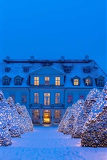 Preview iPhone wallpaper Germany, Saxony, snow, winter, lights, trees, night, castle, Christmas
