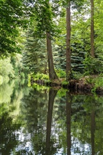 Preview iPhone wallpaper Germany, Spreewald, river, forest, green