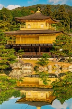 Preview iPhone wallpaper Golden Pavilion, temple, garden, Kyoto, Japan