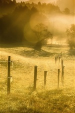 Preview iPhone wallpaper Grass, fence, fog, morning