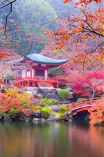 Preview iPhone wallpaper Japan, Kyoto, park, pagoda, colorful leaves, trees, pond, autumn