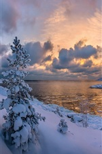 Preview iPhone wallpaper Lake Ladoga, forest, trees, ice, snow, winter, Russia