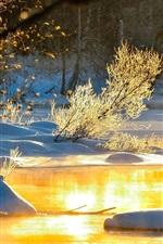 Lake, snow, glare, sunshine, winter