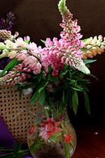 Lupins flowers, still life