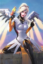 Preview iPhone wallpaper Mercy, Overwatch, Blizzard game, wings, parrot