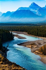 Preview iPhone wallpaper Mountains, forest, trees, river, fog, morning, nature landscape