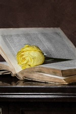 Preview iPhone wallpaper Old book, yellow rose