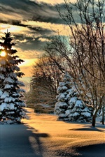 Preview iPhone wallpaper Park, snow, trees, gazebo, winter, clouds, sunshine