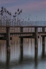 Pier, reeds, pond, dusk