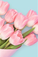 Preview iPhone wallpaper Pink tulips, bouquet, blue background