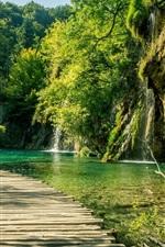 Lagos de Plitvice, caminho de madeira, árvores, verde, Croácia